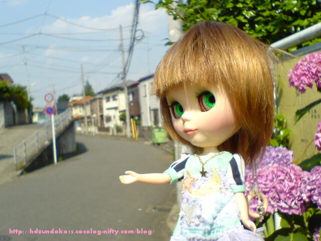 Sn320068_0001